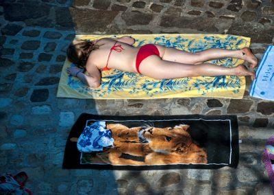 humour & photographie : la lionne