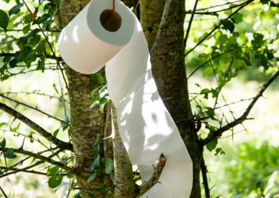 humour & photographie : papier toilette